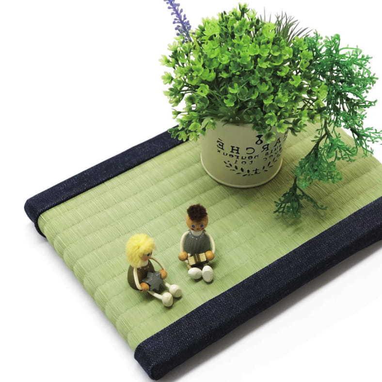 「い草遊びで知る、い草のチカラ」